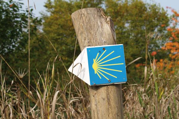 Posts navigation