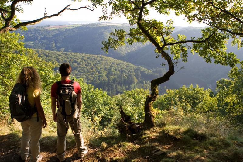 Wandern im Saarland